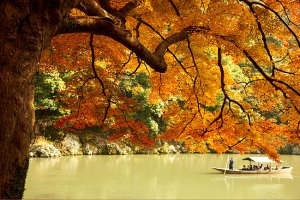 Hoshinoya Kyoto - tranquil riverside retreat in the picturesque Arashiyama region of Kyoto