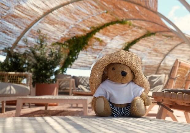 Grand Hotel Eastbourne Teddy