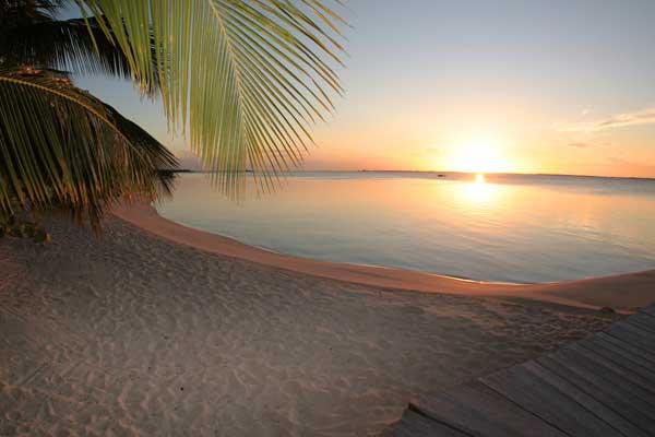 Tiamo Sunset Blog