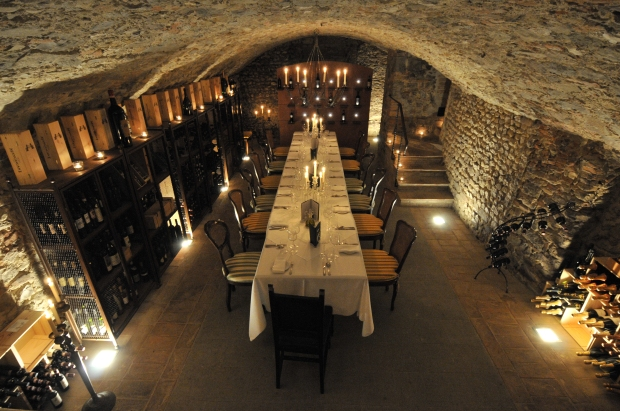 Villa Mangiacane -Wine Cellar
