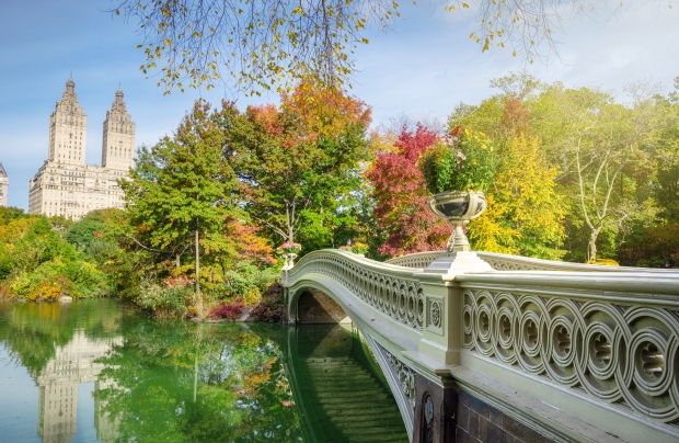 new-york_bowbridge1